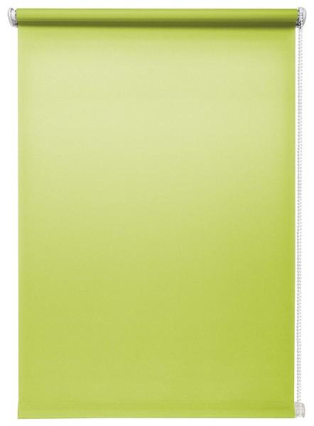 Tageslichtrollo Grün ohne Bohren